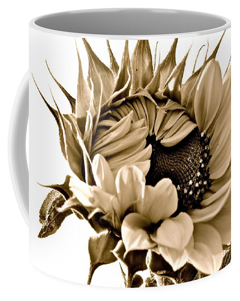 Photographs Coffee Mug featuring the photograph Sophisticated by Gwyn Newcombe