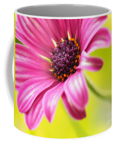 Flowers Coffee Mug featuring the photograph Soprano Curves by Dorothy Lee