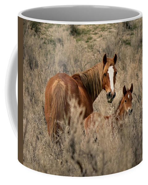 April Coffee Mug featuring the photograph Sorrel Mare And Foal by Debbie Rudd