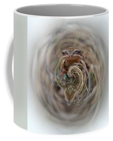 Lehtokukka Coffee Mug featuring the photograph Sorry Said The Frog 2 by Jouko Lehto