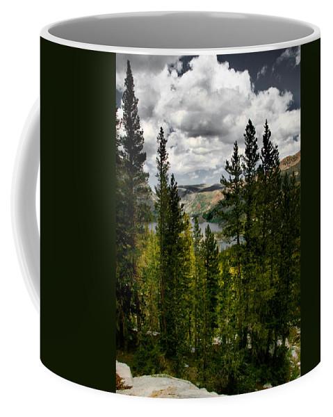 South Lake Through The Pines Coffee Mug featuring the photograph South Lake Through The Pines by Chris Brannen