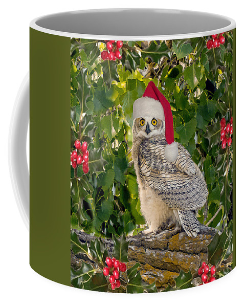 Bubo Virginianus Coffee Mug featuring the photograph Santa Owl by Vicki Stansbury