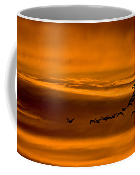Bird Coffee Mug featuring the photograph Southbound by Ches Black