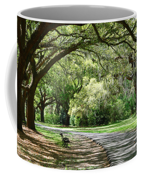 Benches Coffee Mug featuring the photograph Southern Bench by Susanne Van Hulst