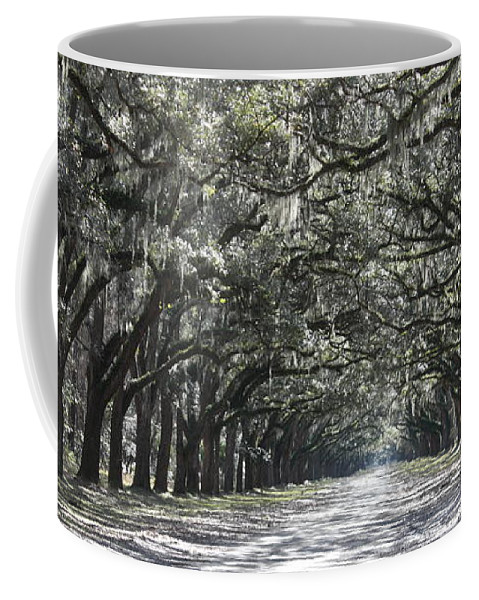 Canvas Coffee Mug featuring the photograph Southern Homecoming by Carol Groenen