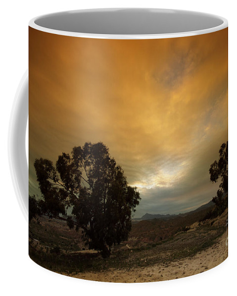 Tree Coffee Mug featuring the photograph Spanish Landscapes by Angel Ciesniarska