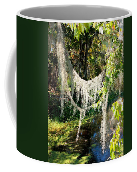 Swamp Coffee Mug featuring the photograph Spanish Moss Over The Swamp by Carol Groenen