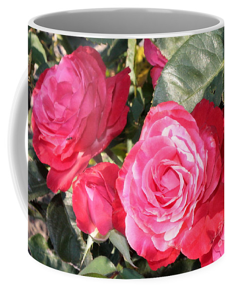 Rose Coffee Mug featuring the photograph Sparkling Roses by Carol Groenen
