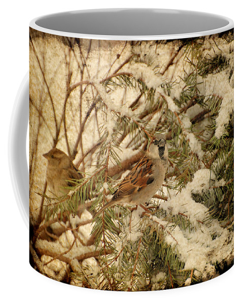 Birds Coffee Mug featuring the photograph Sparrow In Winter Iv - Textured by Angie Tirado