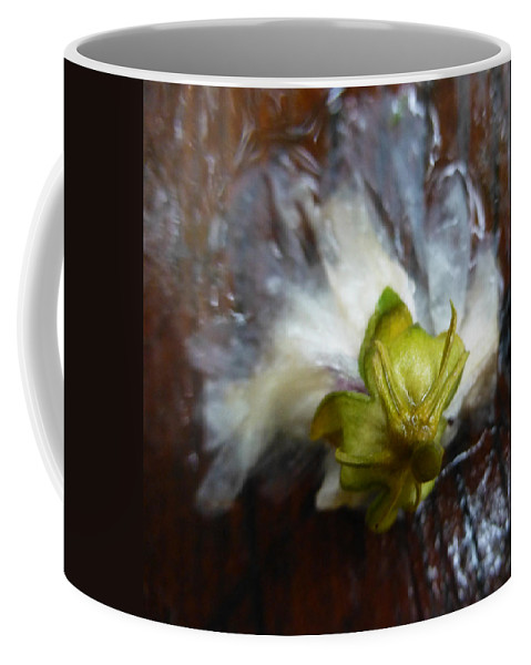 Water Coffee Mug featuring the photograph Spent by Claudia Goodell