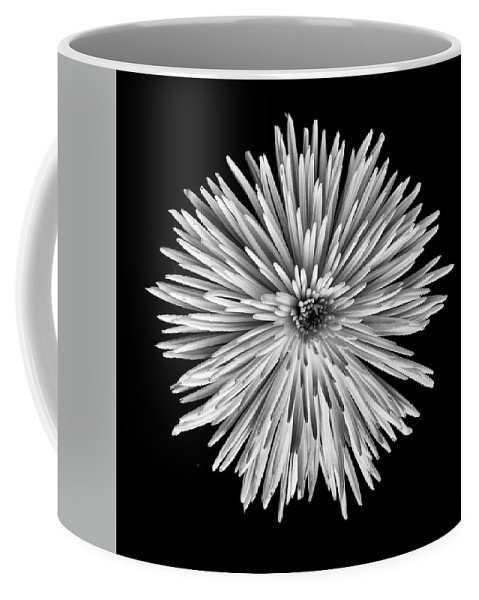 Black And White Coffee Mug featuring the photograph Spider Mum by Joy Schmitz
