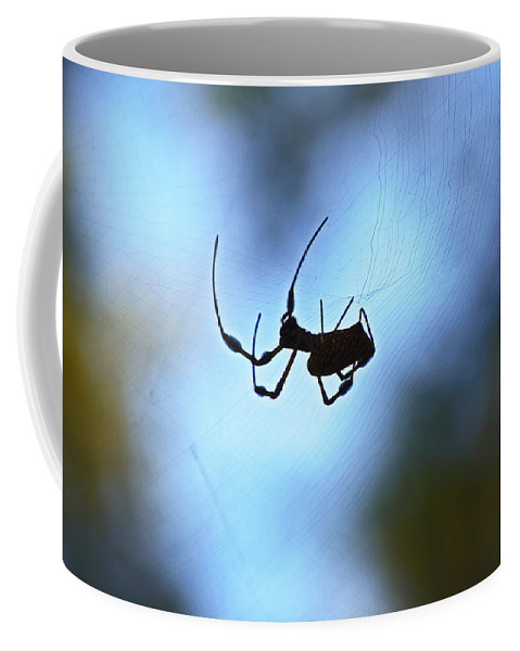 Spider Coffee Mug featuring the photograph Spider Silhouette by Kenneth Albin