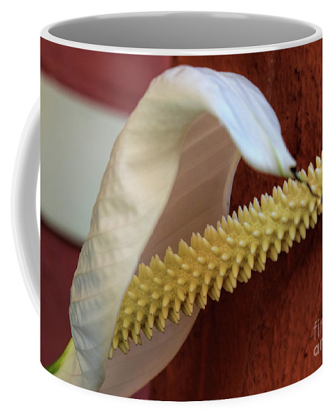 Flower Coffee Mug featuring the photograph Spikes by William Tasker