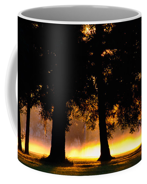 Landscape Coffee Mug featuring the photograph Spilled Suinshine by Tikvah's Hope