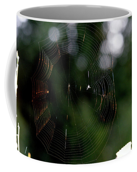 Spider Coffee Mug featuring the photograph Spinning My Web by Barbara Treaster