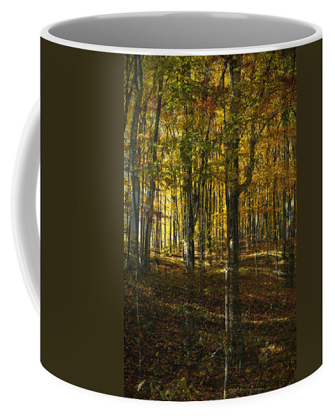 Woods Coffee Mug featuring the photograph Spirits In The Woods by Tim Nyberg
