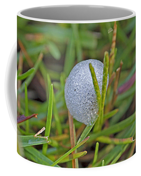 Insect Coffee Mug featuring the photograph Spittle Bug Case by Kenneth Albin