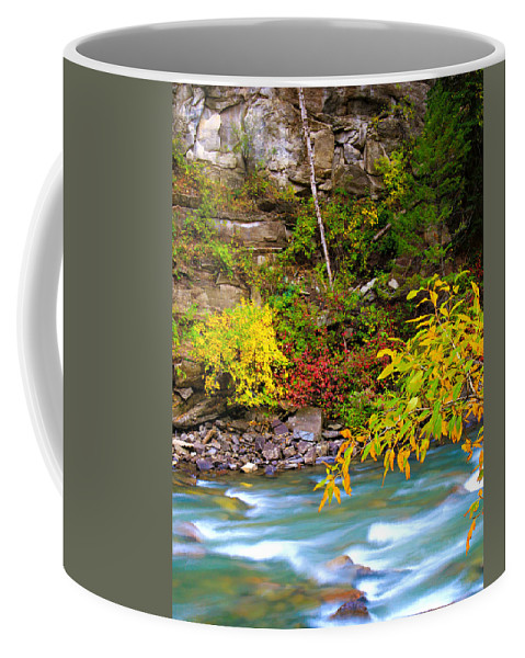 Colorado Coffee Mug featuring the photograph Splash Of Color Along The Creek by Bill Keiran