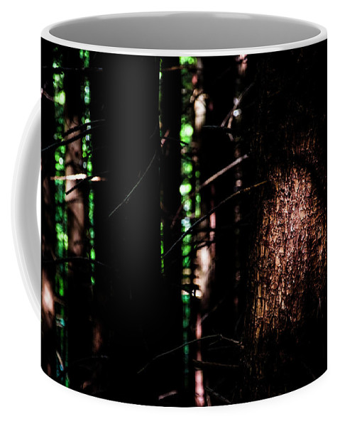 Sun Spotlighting Tree Dense Forest Washington State Pacific Northwest Hike Hiking Wilderness Outside Pnw Outdoors Pacific Northwest Explore Mountain View Views Quest Live Authentic Outbound Trees Love Beautiful Happy Fun Art Smile Style Amazing Cool Awesome Adventure Coffee Mug featuring the photograph Spotlight In The Woods by Pelo Blanco Photo