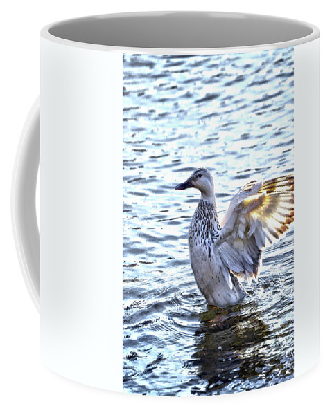 Ducks Coffee Mug featuring the photograph Spreading My Wings Hdr by Lesa Fine