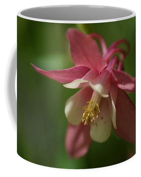Flower Coffee Mug featuring the photograph Spring 1 by Alex Grichenko