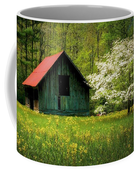 Blue Ridge Mountains Coffee Mug featuring the photograph Spring and the Barn by Zayne Diamond Photographic