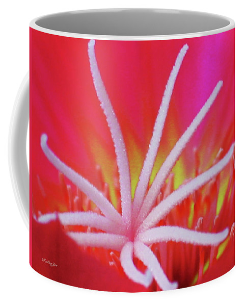 Echinocereus Coffee Mug featuring the photograph Spring Blossom 19 by Xueling Zou