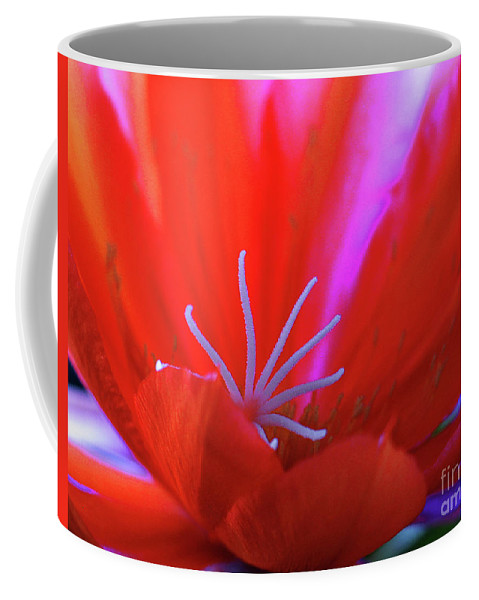 Blue Coffee Mug featuring the photograph Spring Blossom 8 by Xueling Zou