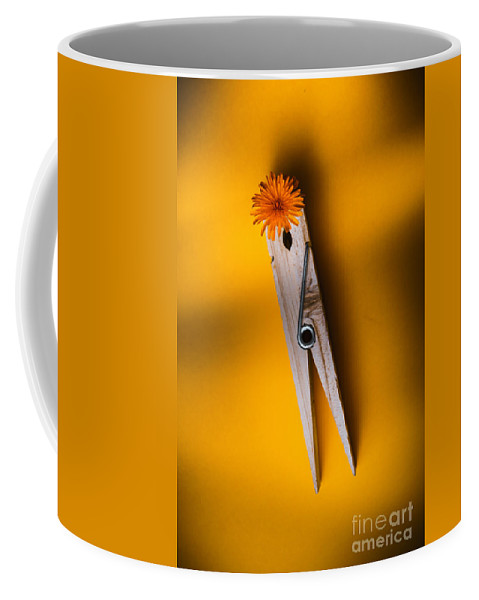Flower Coffee Mug featuring the photograph Spring Cleaning by Jorgo Photography - Wall Art Gallery