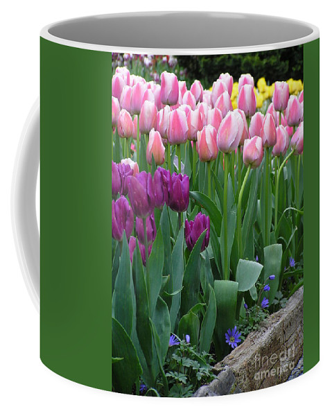 Tulips Coffee Mug featuring the photograph Spring Colors by Louise Magno