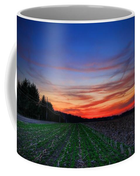 Field Coffee Mug featuring the photograph Spring Field by Evelina Kremsdorf