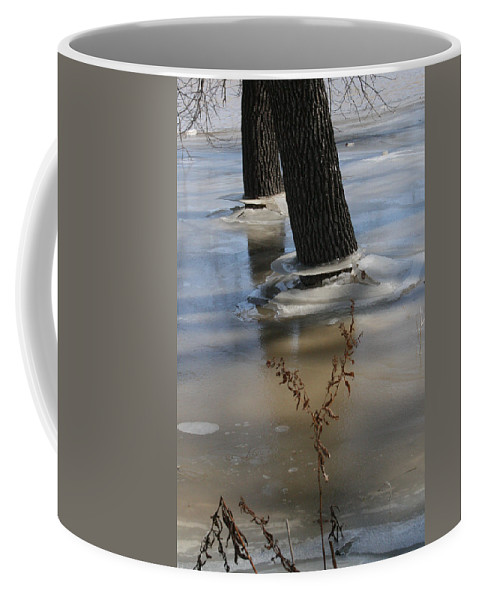 Spring Coffee Mug featuring the photograph Spring Flood by Mary Mikawoz