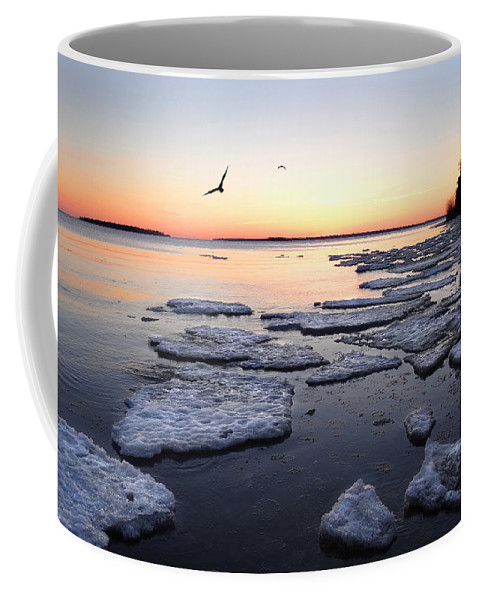 Spring Coffee Mug featuring the photograph Spring Ice Breakup by David T Wilkinson