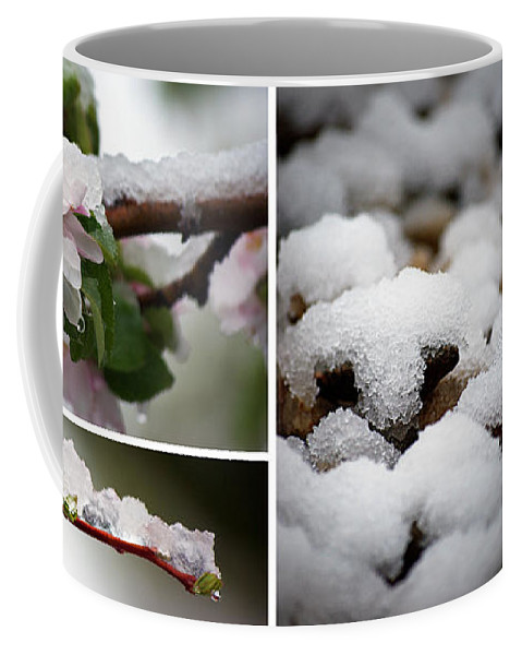 Isa Knechtel Coffee Mug featuring the photograph Spring In Calgary by Lisa Knechtel