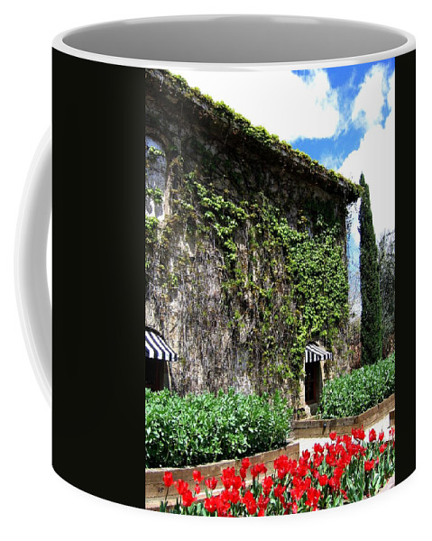 Napa Valley Coffee Mug featuring the photograph Spring In The Napa Valley by Will Borden