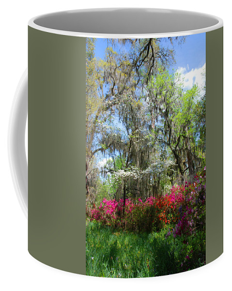 Spring Flowers Coffee Mug featuring the photograph Spring Is All Over by Susanne Van Hulst