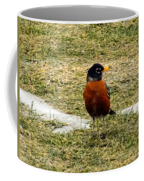 Robin Coffee Mug featuring the photograph Spring Is Here by William Tasker