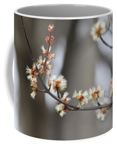 Buds Coffee Mug featuring the photograph Spring by Lauri Novak
