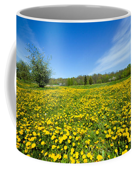 Spring Coffee Mug featuring the photograph Spring Meadow Full Of Dandelions Flowers And Green Grass by Michal Bednarek