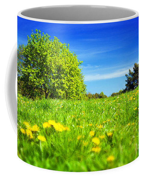 Countryside Coffee Mug featuring the photograph Spring Meadow With Green Grass by Michal Bednarek