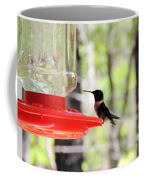 A Flash Of Green And Red Coffee Mug featuring the photograph Spring Migration Hummingbird by Roe Rader