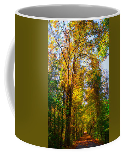 Path Coffee Mug featuring the photograph Spring Path by Parker Cunningham
