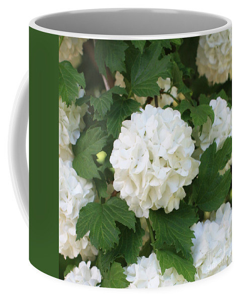 Snowball Coffee Mug featuring the photograph Spring Snowball by Carol Groenen