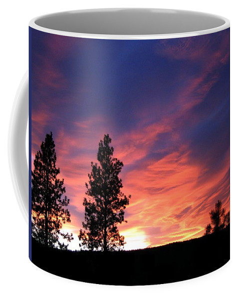 Sunset Coffee Mug featuring the photograph Spring Spectacle by Will Borden