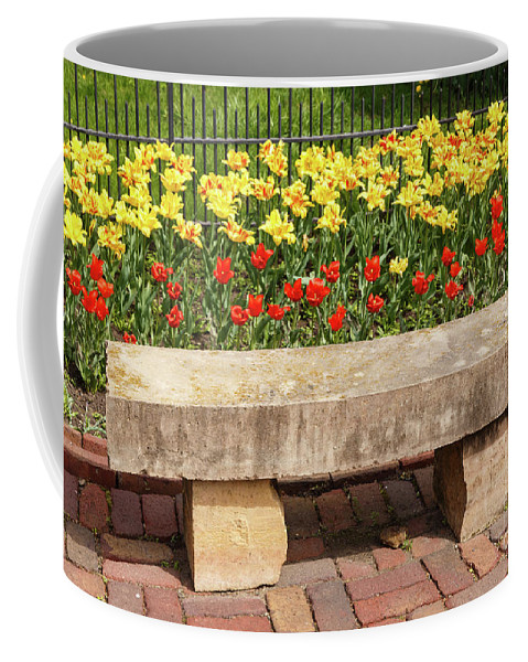 Tulip Coffee Mug featuring the photograph Spring Surrounds The Bench by Terri Morris