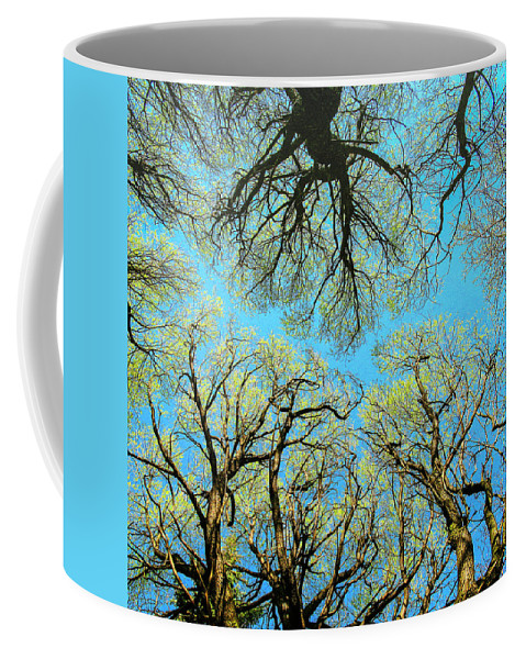 Landscape Coffee Mug featuring the photograph Spring Trees by Vladimir Kholostykh