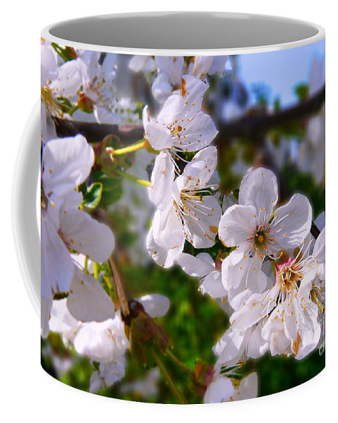 Spring Coffee Mug featuring the photograph Spring White by Jasna Dragun