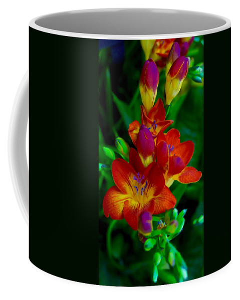 Blooms Coffee Mug featuring the photograph Springtime Happiness by Tim G Ross
