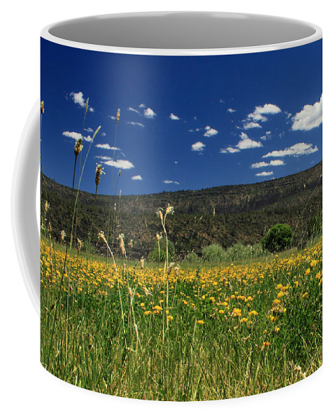 Landscape Coffee Mug featuring the photograph Springtime In Hat Creek by James Eddy