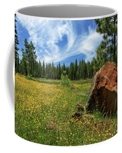 Landscape Coffee Mug featuring the photograph Springtime In Lassen County by James Eddy